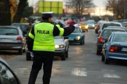 policja znicz